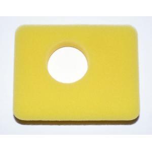 Oro filtras BRIGGS&STRATTON SPRINT Serija 500