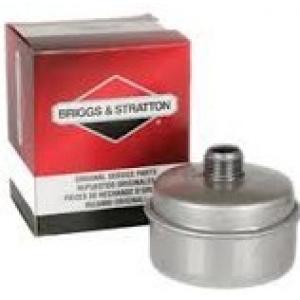 Duslintuvas BRIGGS&STRATTON 3