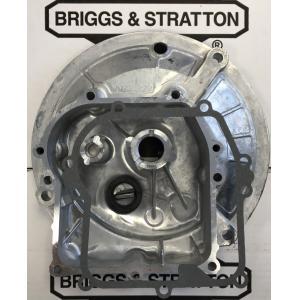 Karterisis BRIGGS&STRATTON Serija 450E 500E