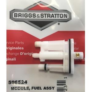 Karbiuratoriaus antgalis BRIGGS&STRATTON 596524